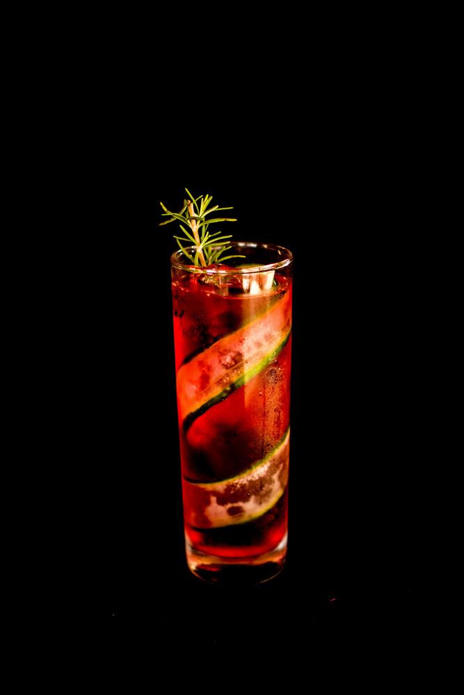 Gin fiz hibisco (gin)